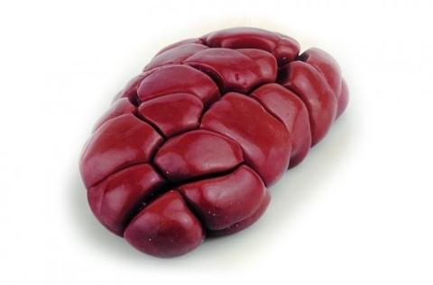 Frozen Beef Kidneys A Grade Various Brands