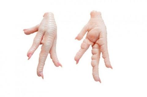 Frozen Chicken Paws A or B Grade Various Brands