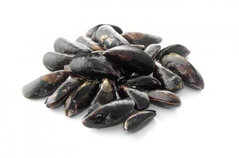 Frozen Mussels Whole, Half Shell or Meat A Grade Various Brands